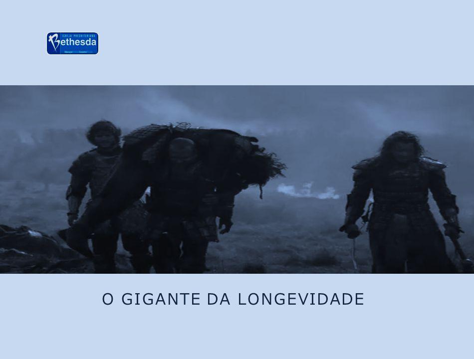 O GIGANTE DA LONGEVIDADE