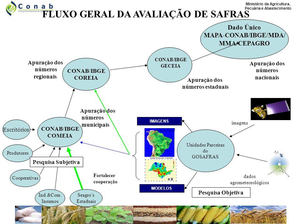 Ministério da Agricultura, Pecuária e Abastecimento Unidades Parceiras do GOSAFRAS imagens dados agrometeorológicos MODELOS IMAGENS CONAB/IBGE COMEIA Produtores Cooperativas Ind.&Com.