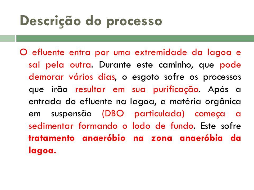 Descrição do processo O efluente entra por uma extremidade da lagoa e sai pela outra. Durante este caminho, que pode demorar vários dias, o esgoto sof