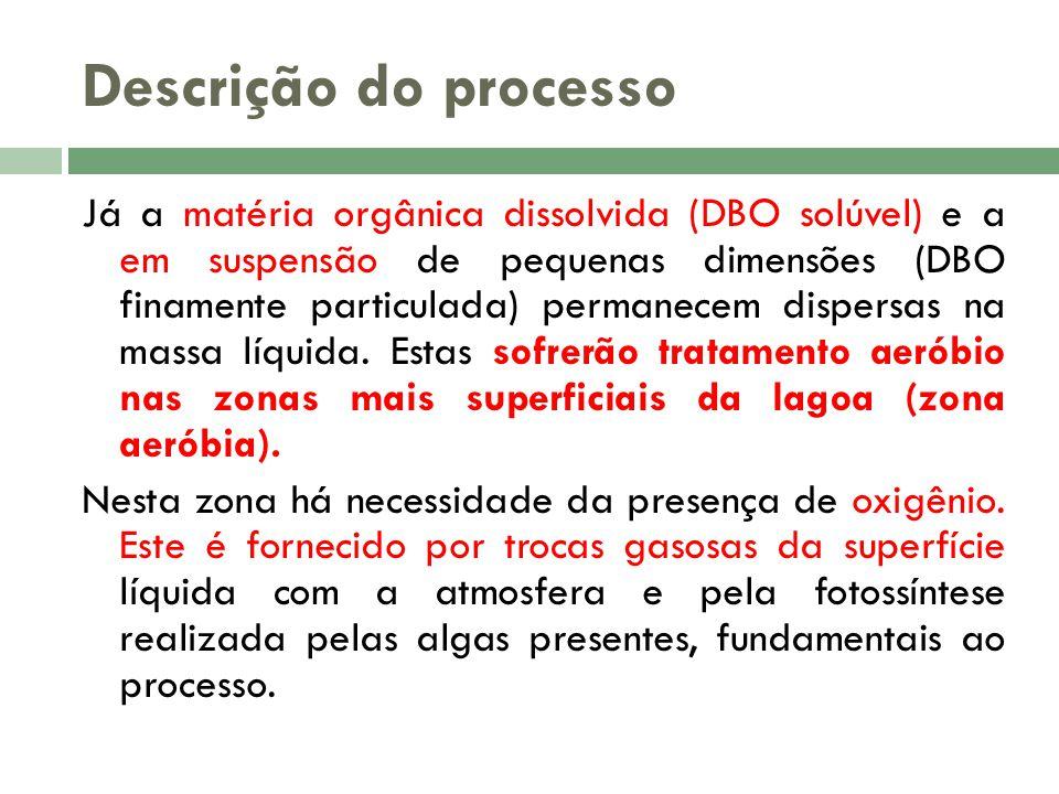 Descrição do processo Já a matéria orgânica dissolvida (DBO solúvel) e a em suspensão de pequenas dimensões (DBO finamente particulada) permanecem dis