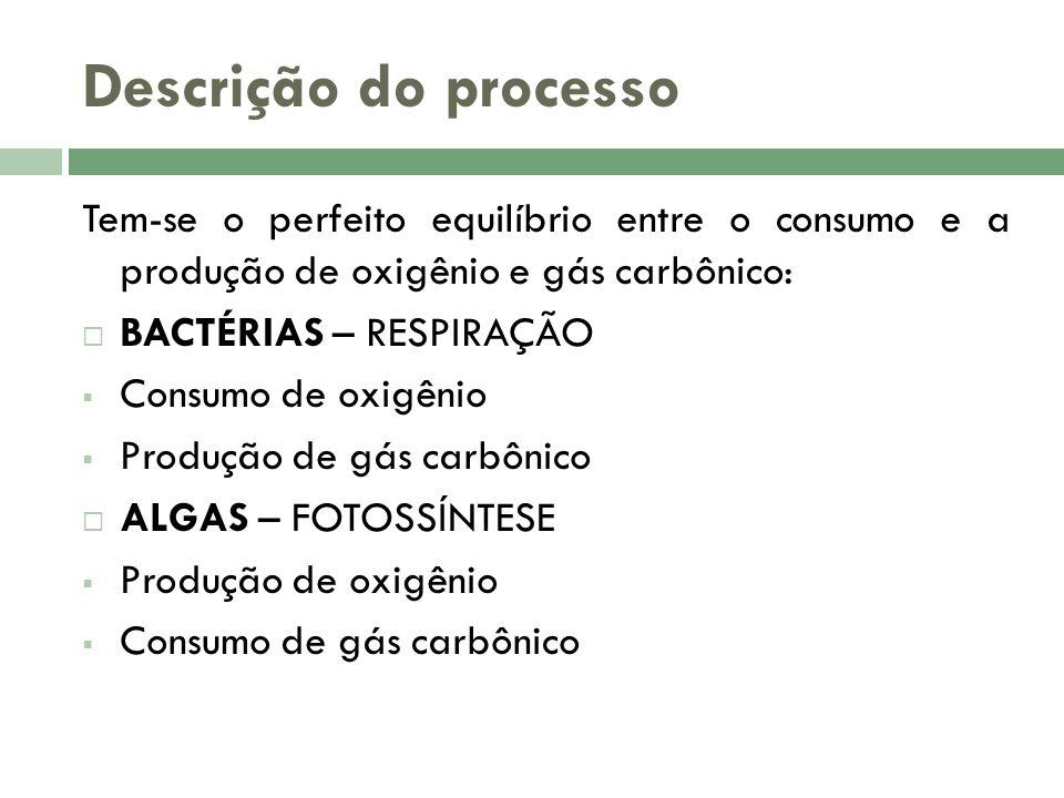 Descrição do processo Tem-se o perfeito equilíbrio entre o consumo e a produção de oxigênio e gás carbônico: BACTÉRIAS – RESPIRAÇÃO Consumo de oxigênio Produção de gás carbônico ALGAS – FOTOSSÍNTESE Produção de oxigênio Consumo de gás carbônico