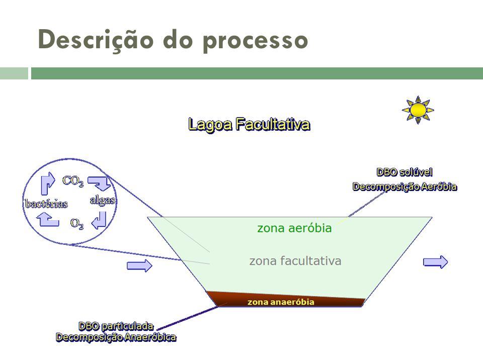 Descrição do processo