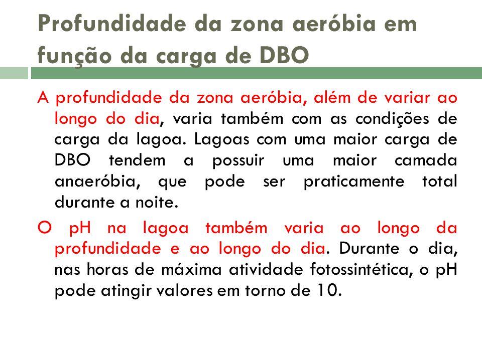 Profundidade da zona aeróbia em função da carga de DBO A profundidade da zona aeróbia, além de variar ao longo do dia, varia também com as condições de carga da lagoa.