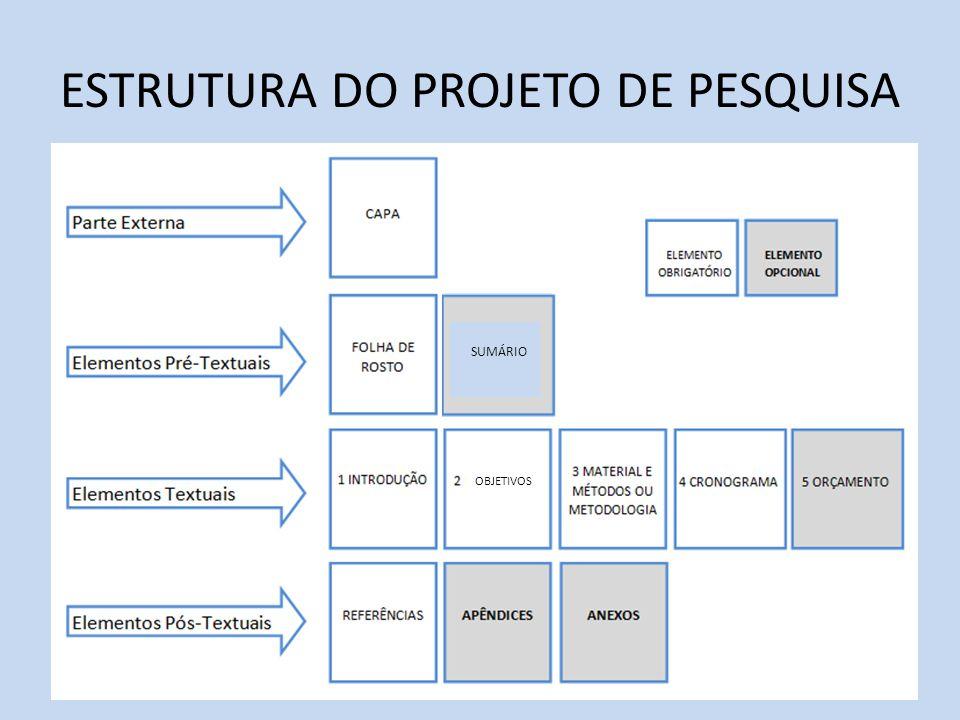 ESTRUTURA DO PROJETO DE PESQUISA OBJETIVOS SUMÁRIO
