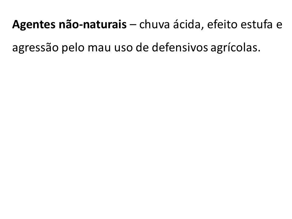 Agentes não-naturais – chuva ácida, efeito estufa e agressão pelo mau uso de defensivos agrícolas.