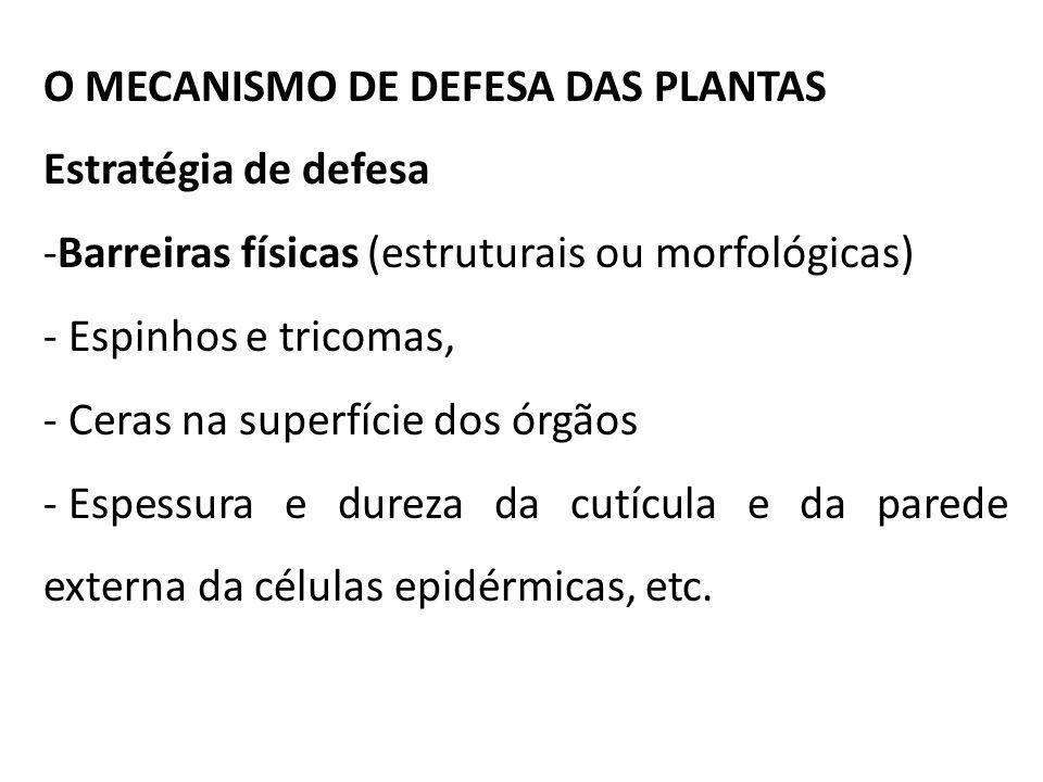O MECANISMO DE DEFESA DAS PLANTAS Estratégia de defesa -Barreiras físicas (estruturais ou morfológicas) - Espinhos e tricomas, - Ceras na superfície d