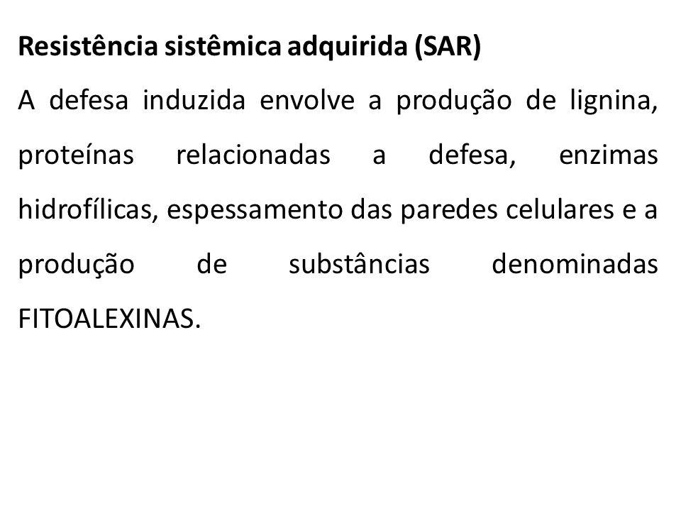 Resistência sistêmica adquirida (SAR) A defesa induzida envolve a produção de lignina, proteínas relacionadas a defesa, enzimas hidrofílicas, espessam
