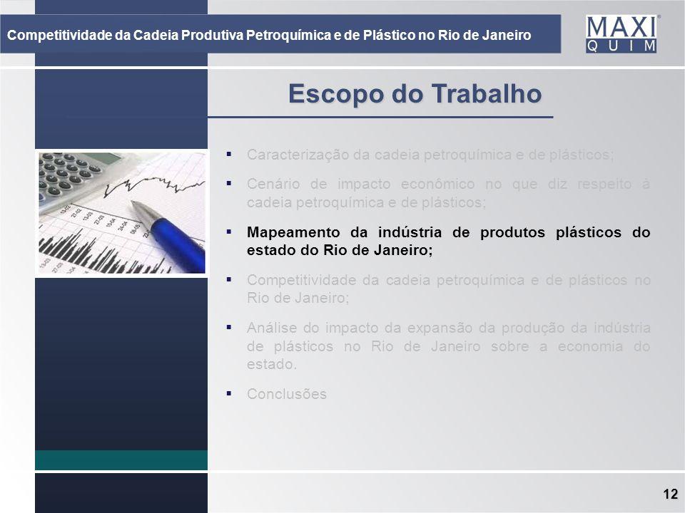 12 Escopo do Trabalho Caracterização da cadeia petroquímica e de plásticos; Cenário de impacto econômico no que diz respeito à cadeia petroquímica e d
