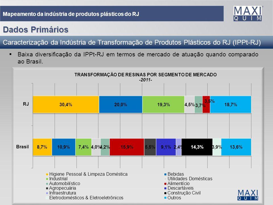 21 Mapeamento da indústria de produtos plásticos do RJ Dados Primários Caracterização da Indústria de Transformação de Produtos Plásticos do RJ (IPPt-