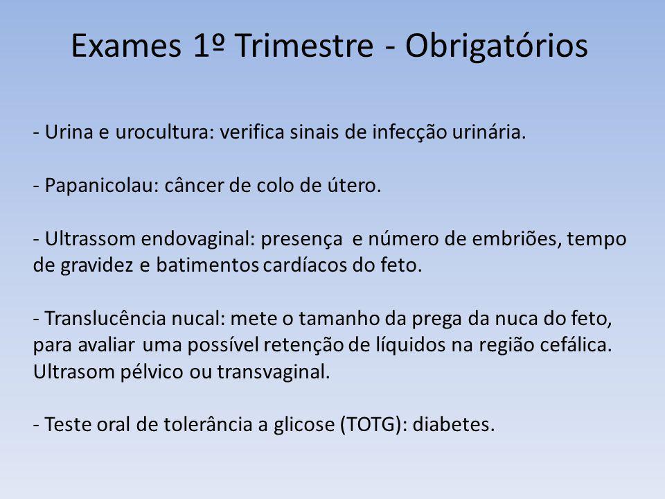 Exames 1º Trimestre - Obrigatórios - Urina e urocultura: verifica sinais de infecção urinária. - Papanicolau: câncer de colo de útero. - Ultrassom end