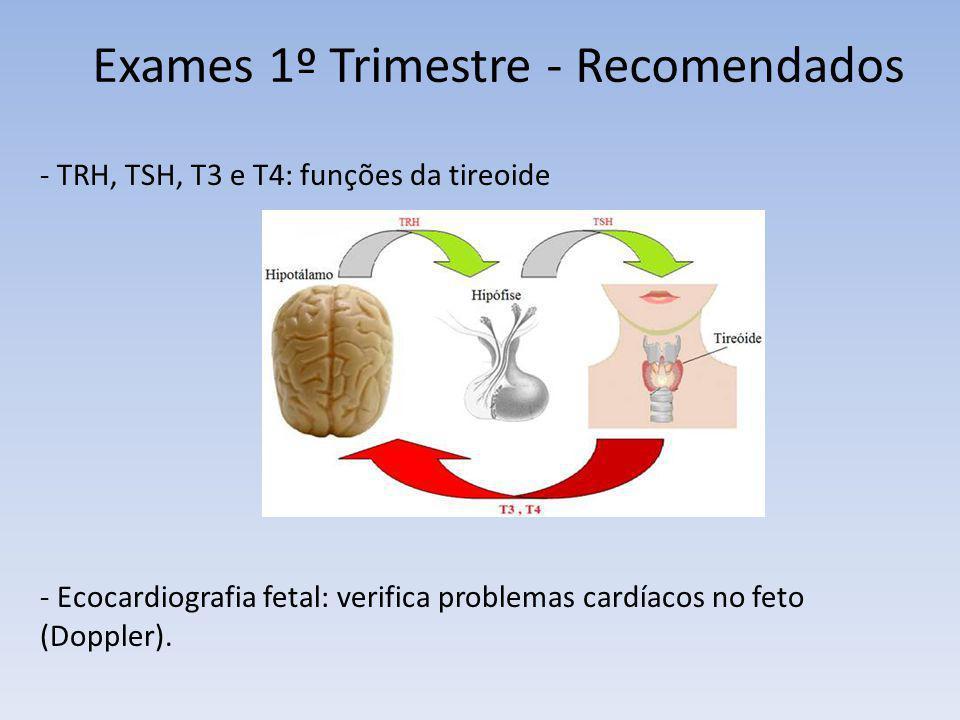 Exames 1º Trimestre - Recomendados - TRH, TSH, T3 e T4: funções da tireoide - Ecocardiografia fetal: verifica problemas cardíacos no feto (Doppler).