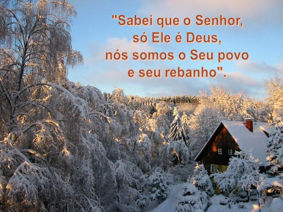 (Salmo 65,1-2)