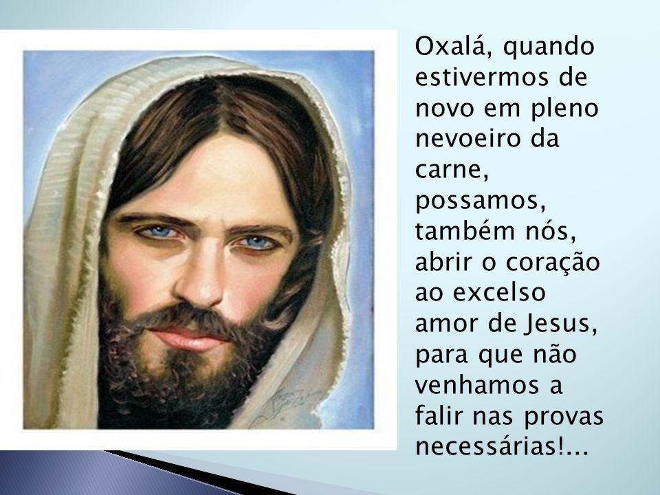 Oxalá, quando estivermos de novo em pleno nevoeiro da carne, possamos, também nós, abrir o coração ao excelso amor de Jesus, para que não venhamos a f