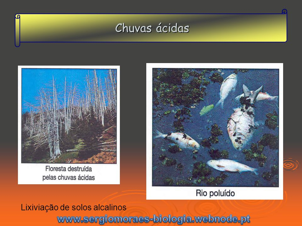 Chuvas ácidas Lixiviação de solos alcalinos