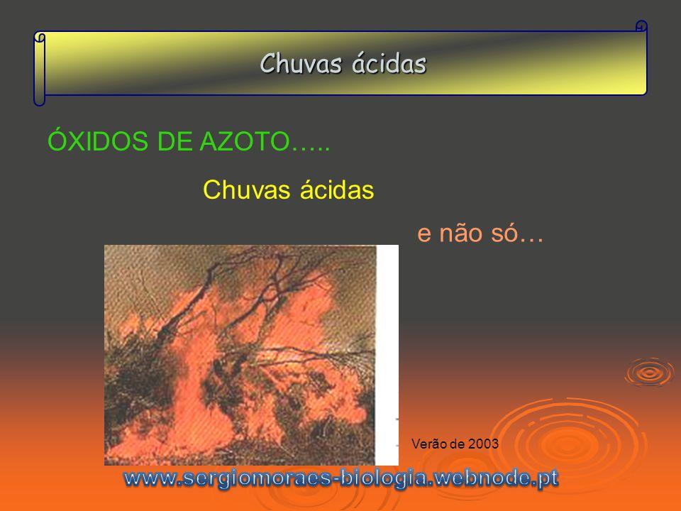 Chuvas ácidas ÓXIDOS DE AZOTO….. Chuvas ácidas e não só… Verão de 2003
