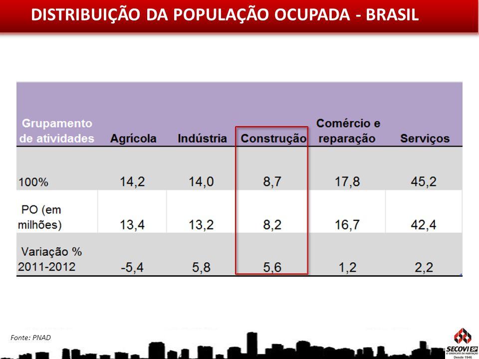 DISTRIBUIÇÃO DA POPULAÇÃO OCUPADA - BRASIL Fonte: PNAD