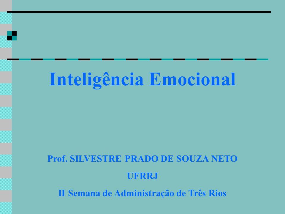 Inteligência Emocional Prof. SILVESTRE PRADO DE SOUZA NETO UFRRJ II Semana de Administração de Três Rios