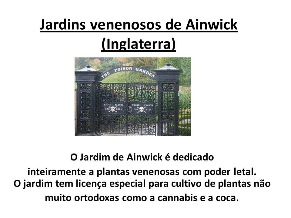 Jardins venenosos de Ainwick (Inglaterra) O Jardim de Ainwick é dedicado inteiramente a plantas venenosas com poder letal. O jardim tem licença especi