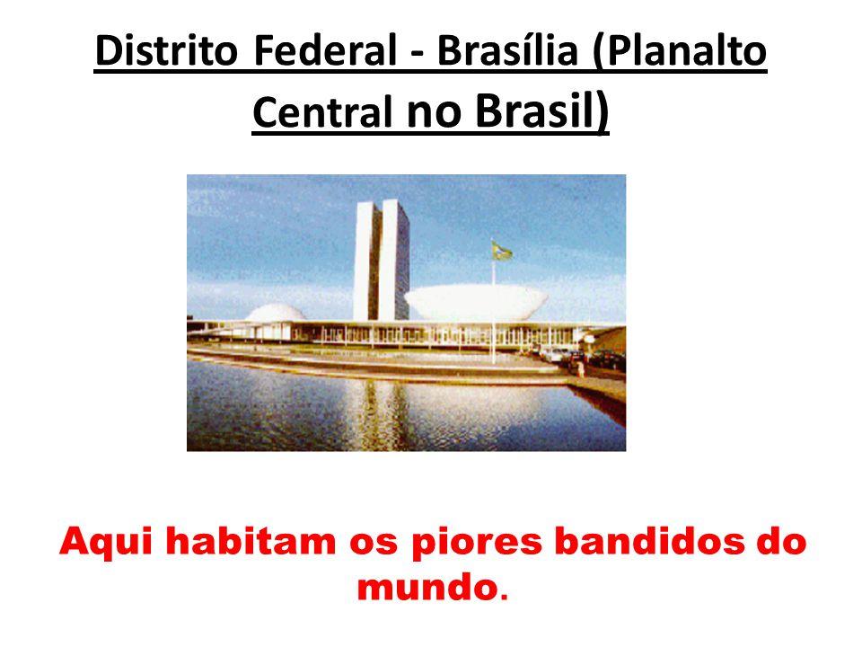Distrito Federal - Brasília (Planalto Central no Brasil) Aqui habitam os piores bandidos do mundo.