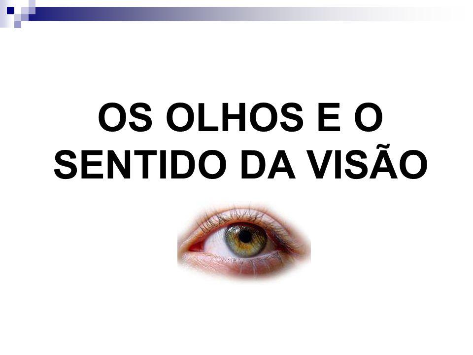 O QUE SÃO FERORMÔNIOS.