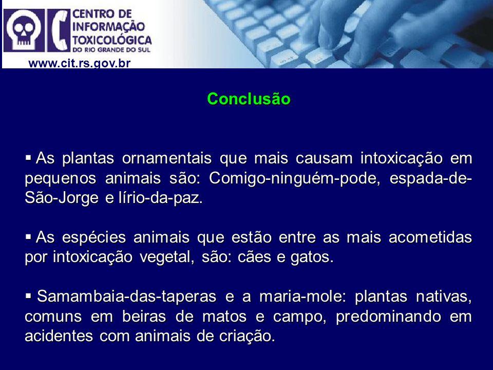 www.cit.rs.gov.br Conclusão As plantas ornamentais que mais causam intoxicação em pequenos animais são: Comigo-ninguém-pode, espada-de- São-Jorge e lí