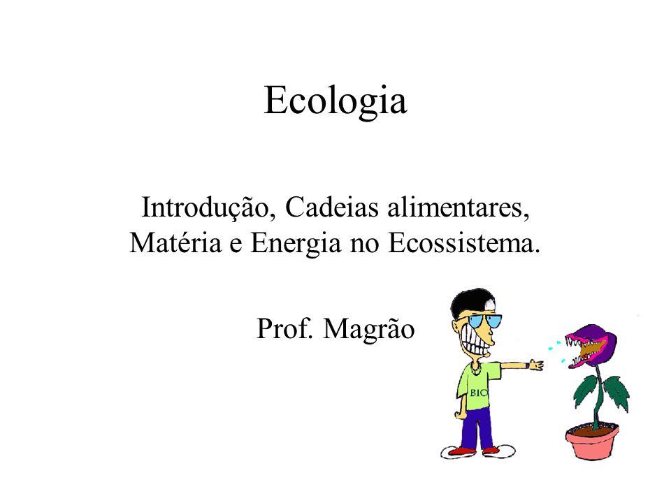 Ecologia Introdução, Cadeias alimentares, Matéria e Energia no Ecossistema. Prof. Magrão
