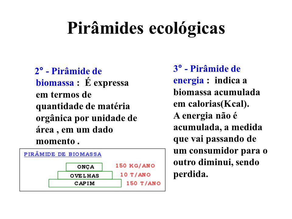 Pirâmides ecológicas 2° - Pirâmide de biomassa : É expressa em termos de quantidade de matéria orgânica por unidade de área, em um dado momento.