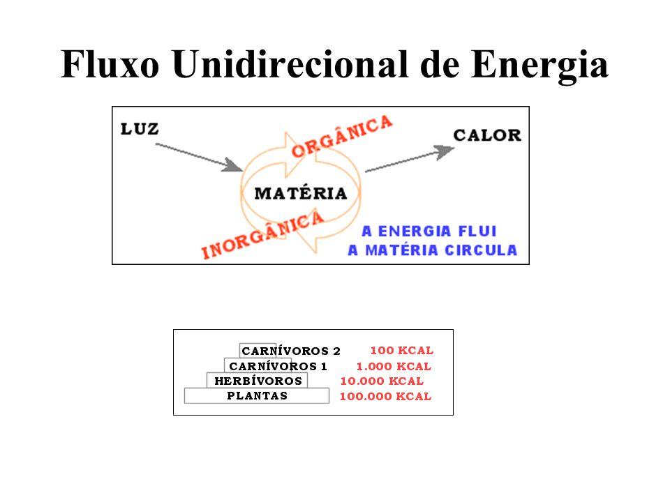 Fluxo Unidirecional de Energia