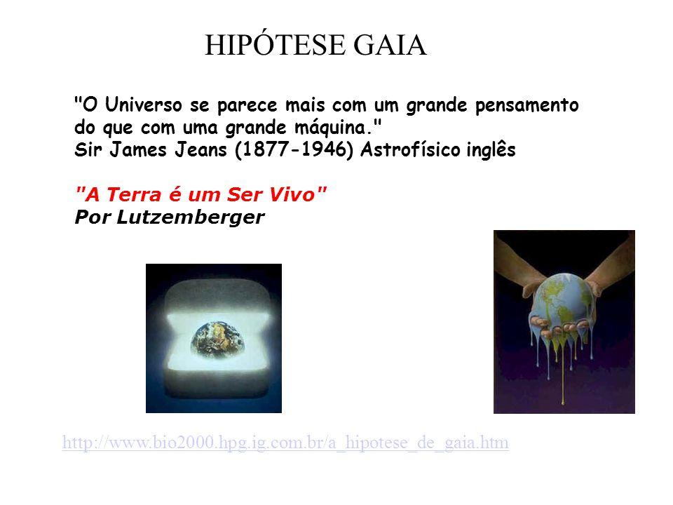 O Universo se parece mais com um grande pensamento do que com uma grande máquina. Sir James Jeans (1877-1946) Astrofísico inglês A Terra é um Ser Vivo Por Lutzemberger http://www.bio2000.hpg.ig.com.br/a_hipotese_de_gaia.htm HIPÓTESE GAIA