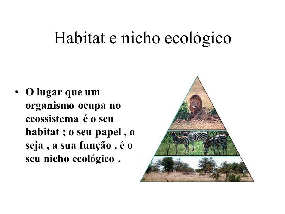 Habitat e nicho ecológico O lugar que um organismo ocupa no ecossistema é o seu habitat ; o seu papel, o seja, a sua função, é o seu nicho ecológico.