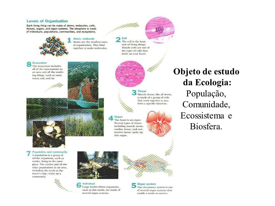 Objeto de estudo da Ecologia: População, Comunidade, Ecossistema e Biosfera.