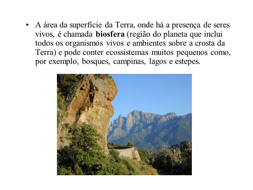 A área da superfície da Terra, onde há a presença de seres vivos, é chamada biosfera (região do planeta que inclui todos os organismos vivos e ambient