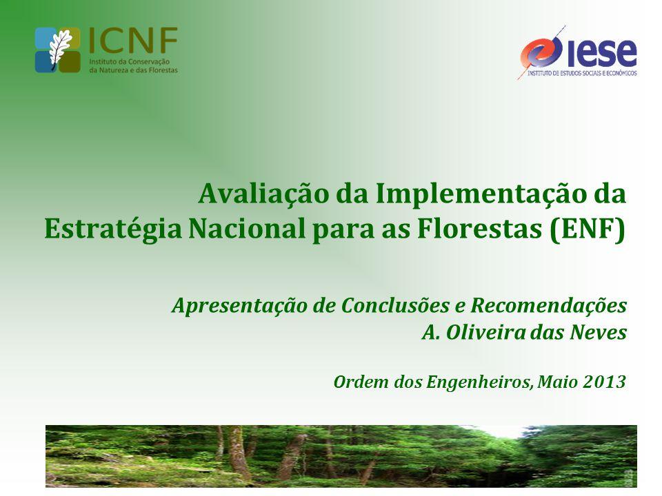 12 Avaliação da Implementação da Estratégia Nacional para as Florestas (ENF) AmeaçasOportunidades Ritmo lento para ultrapassar os problemas estruturais do sector florestal, nomeadamente na vertente fundiária; Persistência de indefinições em matéria de financiamento de intervenções-chave do sector florestal, em contexto de regressão acentuada dos recursos públicos de financiamento; Baixa articulação formal entre os stakeholders do sector florestal para a operacionalização da ENF.