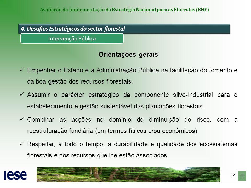 14 Avaliação da Implementação da Estratégia Nacional para as Florestas (ENF) Orientações gerais Empenhar o Estado e a Administração Pública na facilit
