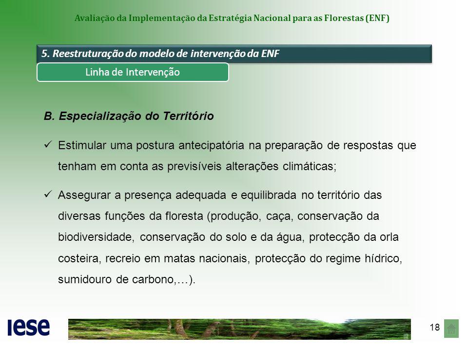 18 Avaliação da Implementação da Estratégia Nacional para as Florestas (ENF) 5. Reestruturação do modelo de intervenção da ENF B. Especialização do Te