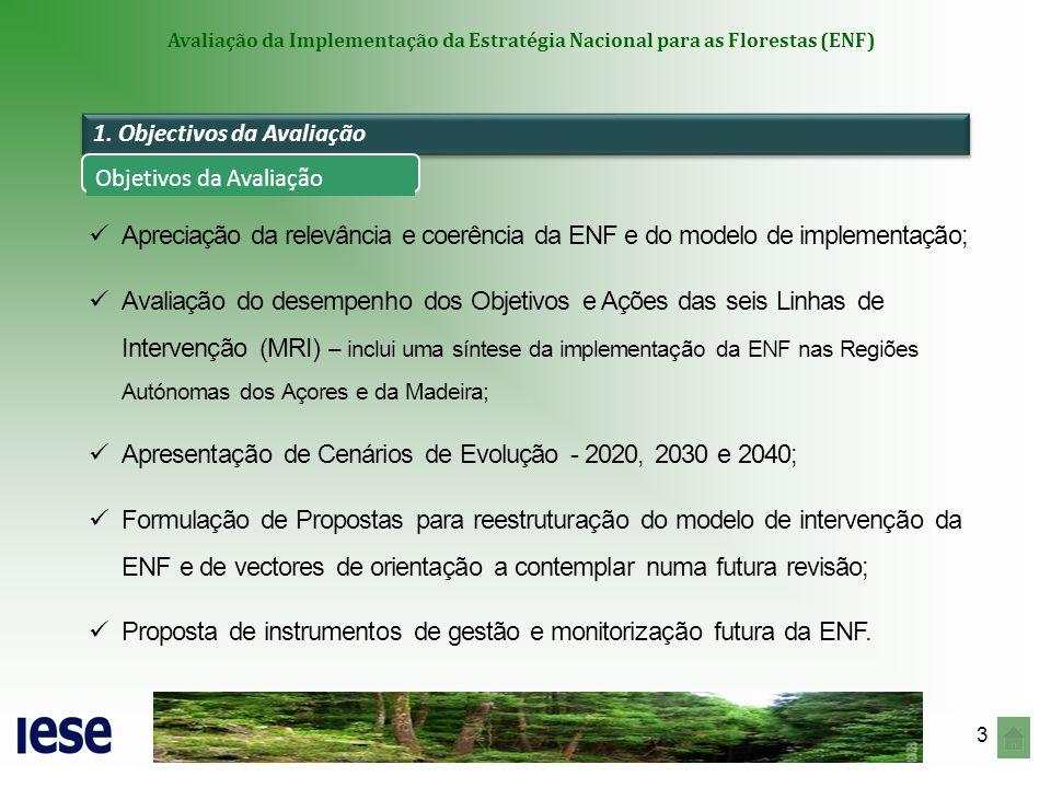 24 Avaliação da Implementação da Estratégia Nacional para as Florestas (ENF) Estabelecer uma visão de longo prazo, rever metas, estabelecer prioridades, hierarquizar ações e reestruturar a bateria de indicadores da Matriz de Responsabilidades e Indicadores; Estabelecer os procedimentos de monitorização e avaliação periódica da ENF com base num sistema integrado de informação articulado com a conceção/actualização do Inventário Florestal - Sistema Nacional Informação dos Recursos Florestais (SNIRF); Aprofundar as ligações aos compromissos internacionais (Nações Unidas, União Europeia, Forest Europe).