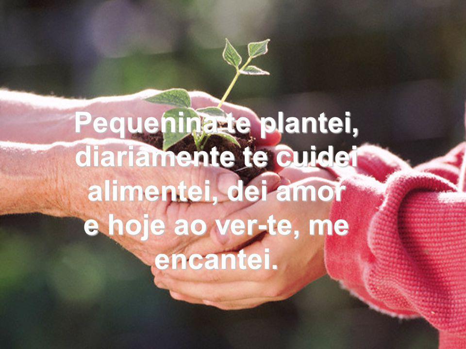 VIDA É AMOR HOME PAGE TE PLANTEI! Poema de: RAYMA LIMA raylima@terra.com.br