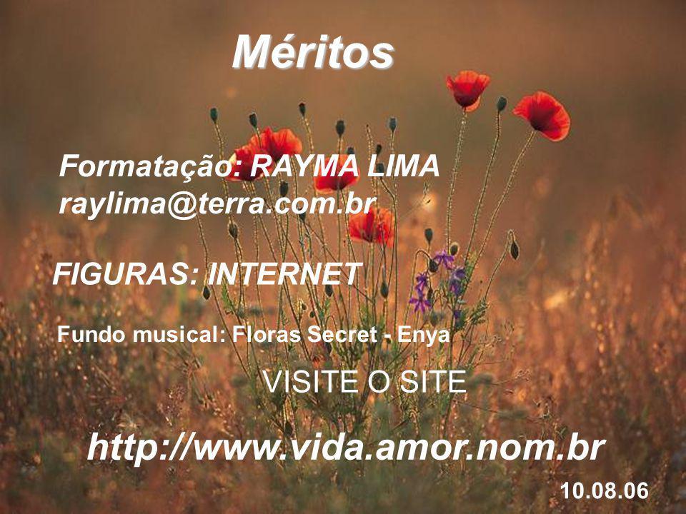 Méritos Formatação: RAYMA LIMA raylima@terra.com.br FIGURAS: INTERNET Fundo musical: Floras Secret - Enya VISITE O SITE http://www.vida.amor.nom.br 10.08.06