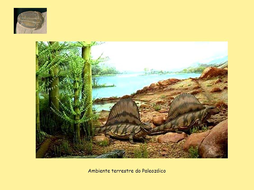 Ambiente terrestre do Paleozóico