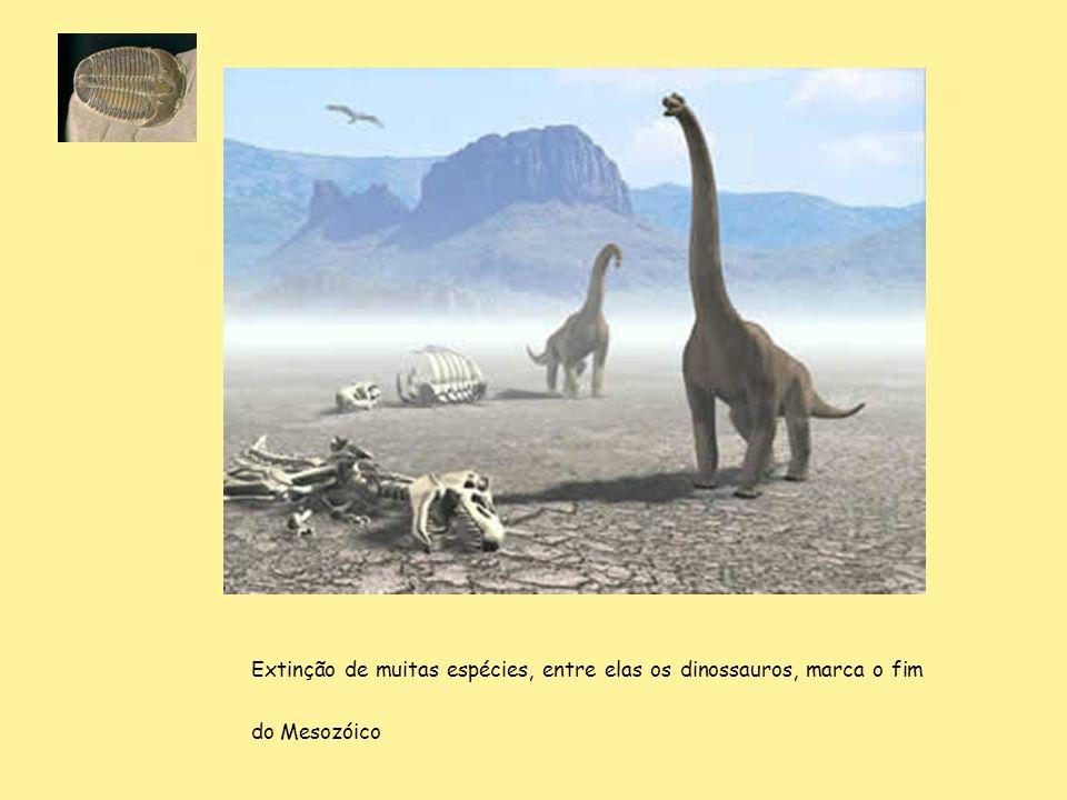 Extinção de muitas espécies, entre elas os dinossauros, marca o fim do Mesozóico
