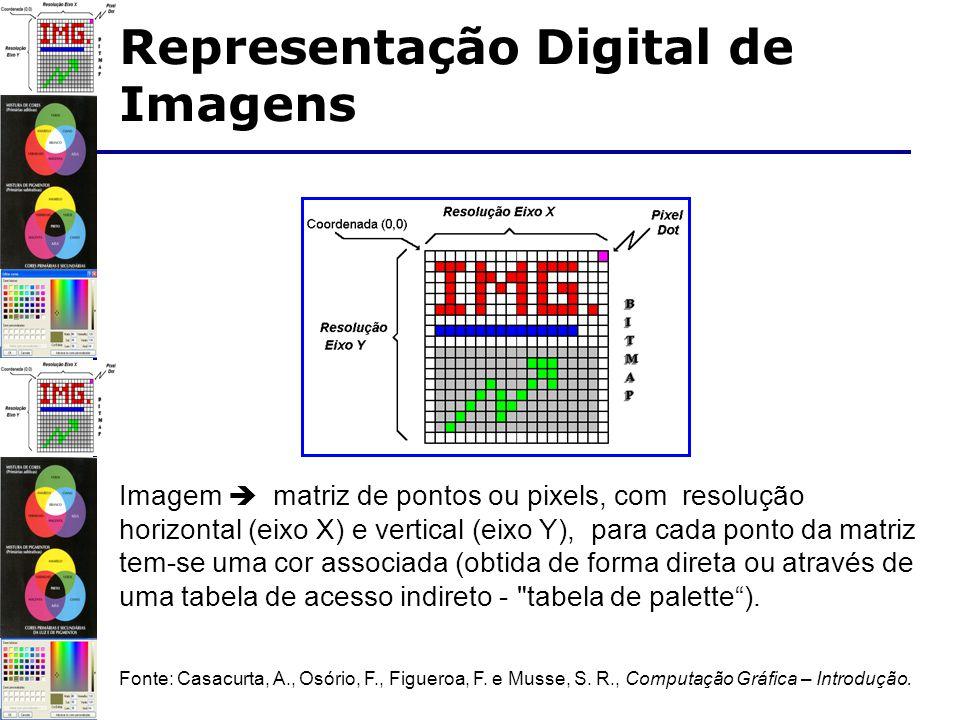 Imagem matriz de pontos ou pixels, com resolução horizontal (eixo X) e vertical (eixo Y), para cada ponto da matriz tem-se uma cor associada (obtida de forma direta ou através de uma tabela de acesso indireto - tabela de palette).