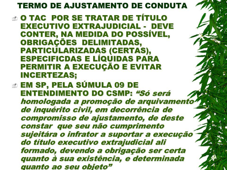 TERMO DE AJUSTAMENTO DE CONDUTA O TAC POR SE TRATAR DE TÍTULO EXECUTIVO EXTRAJUDICIAL - DEVE CONTER, NA MEDIDA DO POSSÍVEL, OBRIGAÇÕES DELIMITADAS, PA