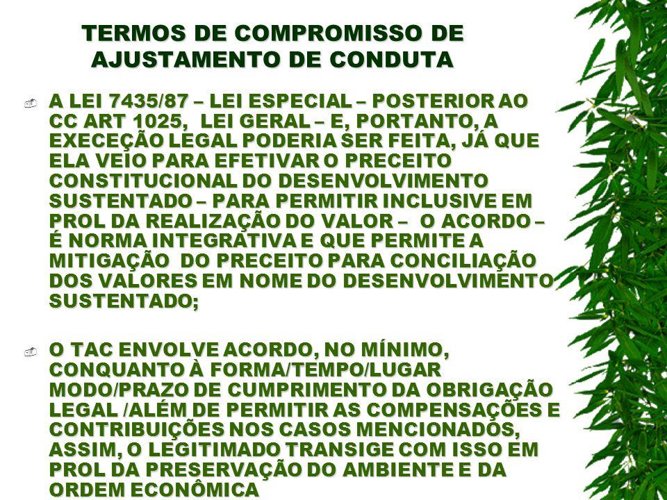 TERMOS DE COMPROMISSO DE AJUSTAMENTO DE CONDUTA A LEI 7435/87 – LEI ESPECIAL – POSTERIOR AO CC ART 1025, LEI GERAL – E, PORTANTO, A EXECEÇÃO LEGAL POD