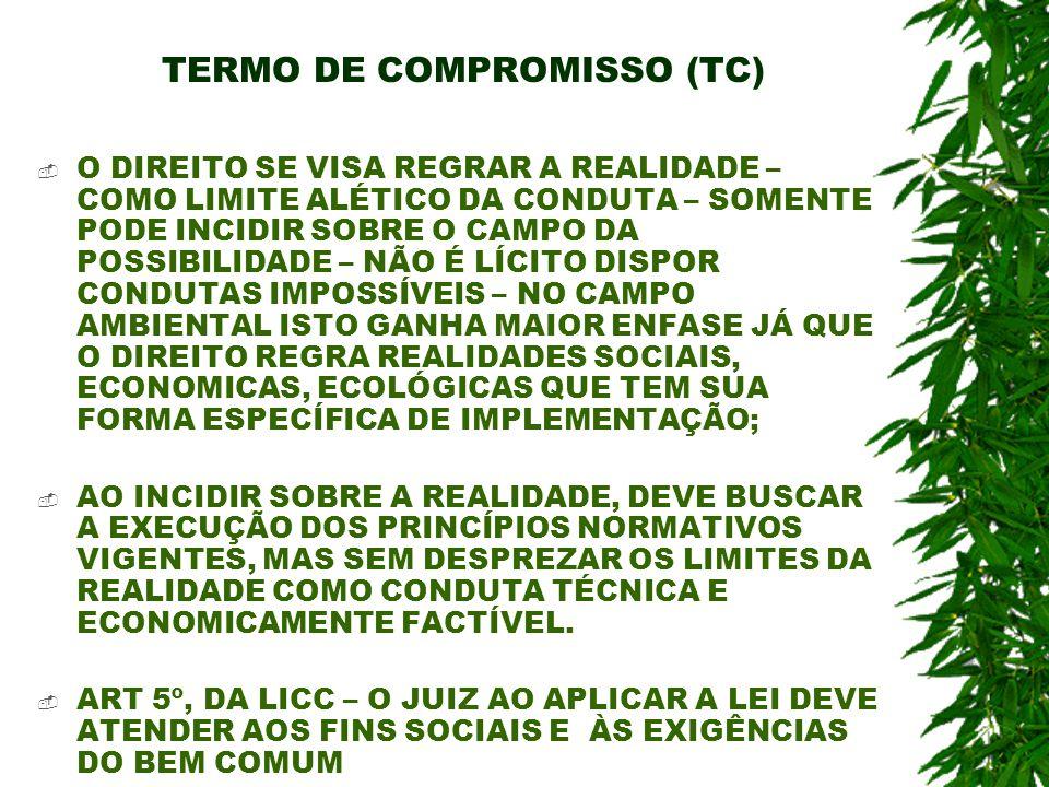 TERMO DE COMPROMISSO (TC) O DIREITO SE VISA REGRAR A REALIDADE – COMO LIMITE ALÉTICO DA CONDUTA – SOMENTE PODE INCIDIR SOBRE O CAMPO DA POSSIBILIDADE