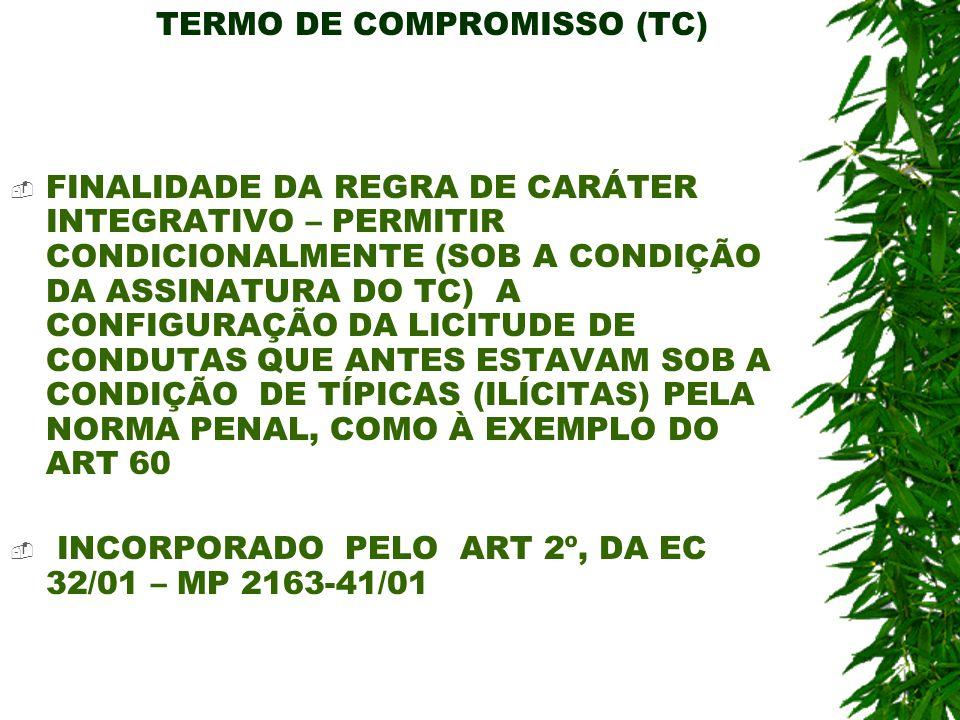 TERMO DE COMPROMISSO (TC) FINALIDADE DA REGRA DE CARÁTER INTEGRATIVO – PERMITIR CONDICIONALMENTE (SOB A CONDIÇÃO DA ASSINATURA DO TC) A CONFIGURAÇÃO D