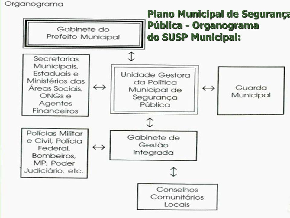Os Municípios como território da implantação do novo modelo de Segurança Pública Nos municípios deve-se concretizar o trabalho da construção do novo m