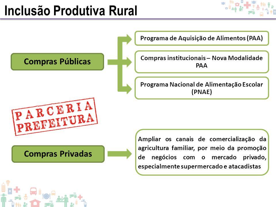 Inclusão Produtiva Rural Programa de Aquisição de Alimentos (PAA) Compras Privadas Compras Públicas Programa Nacional de Alimentação Escolar (PNAE) Co