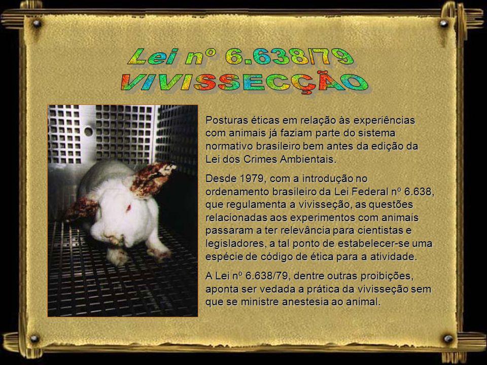 Dr. Ralph Bircher Vivissecção: operação feita em animais vivos para estudo de fenômenos fisiológicos. Vivissecção: operação feita em animais vivos par