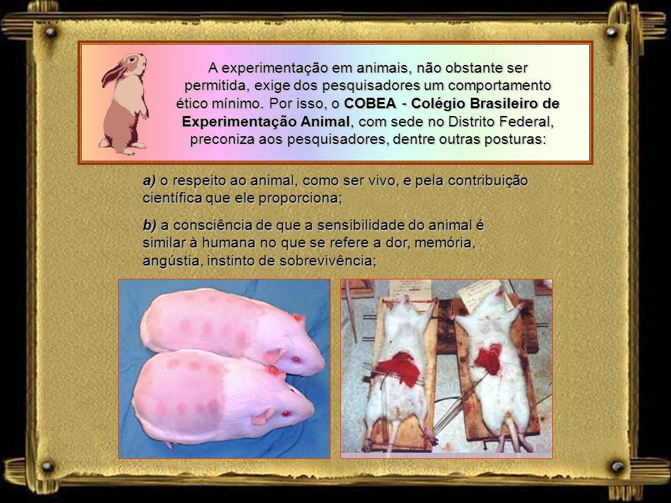Posturas éticas em relação às experiências com animais já faziam parte do sistema normativo brasileiro bem antes da edição da Lei dos Crimes Ambientai