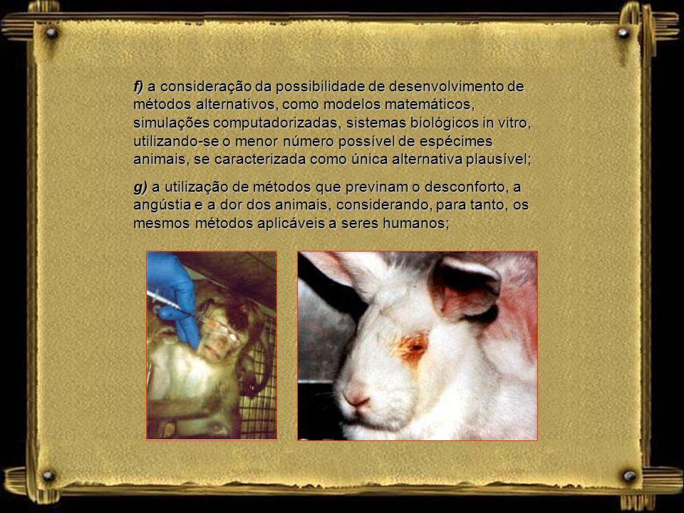 c) a responsabilização moral pela escolha de métodos e ações na experimentação animal; d) a avaliação da importância dos estudos realizados por meio d